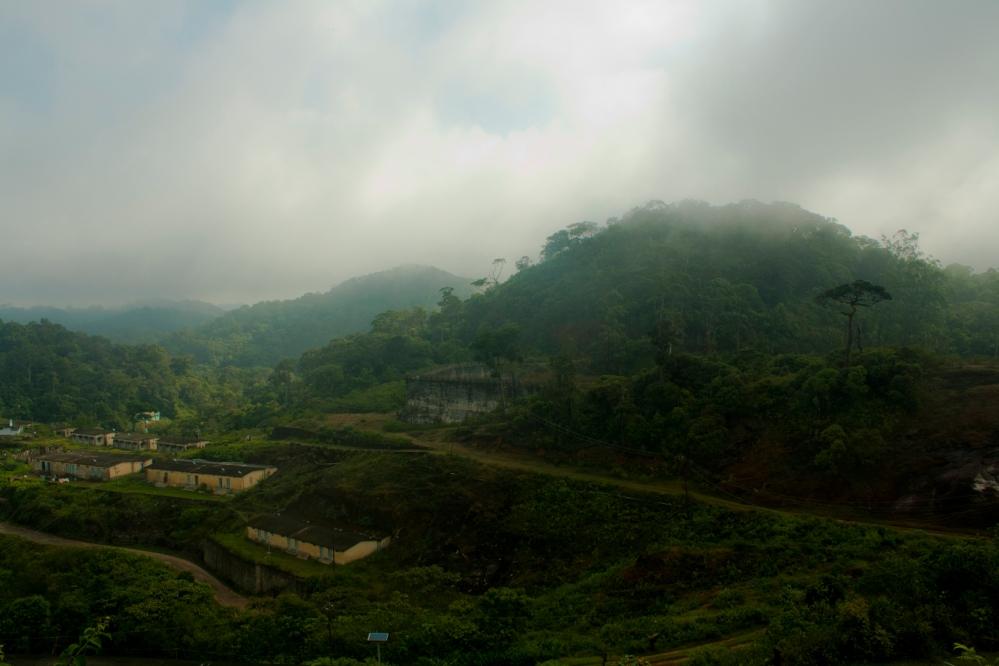 mist-laden-kodayar-kmtr